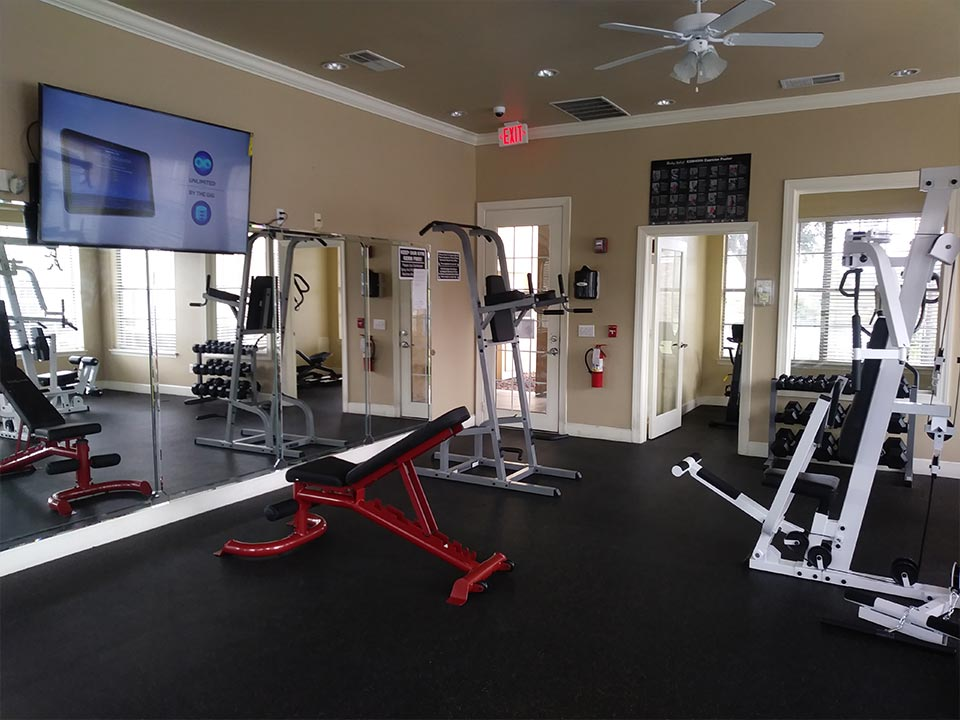 Photo Of The Free Weights and Body-Weight Exercise Equipment For Pull-Ups And Dips In Our Modern Community Fitness Center.