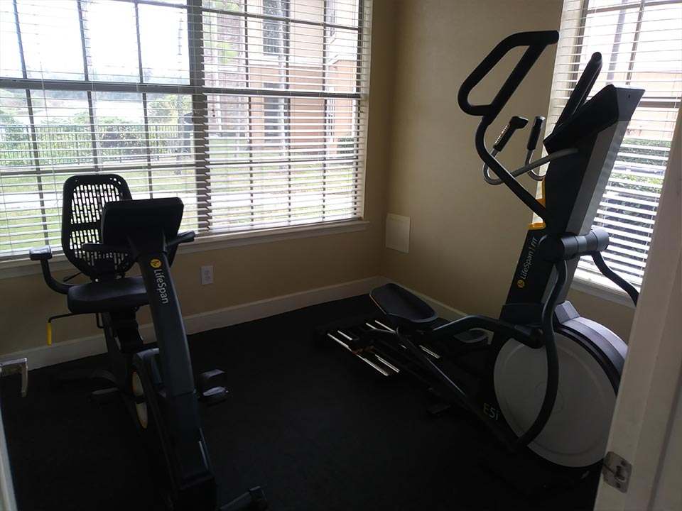 Photo Of The Standing And Seated Ellipticals In Our Modern Community Fitness Center.