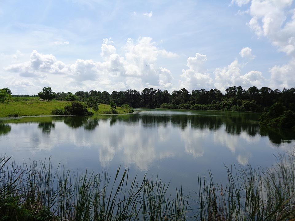 Photo Of The Scenic Community Lake.